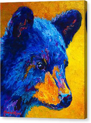 Black Bear Cub 2 Canvas Print by Marion Rose