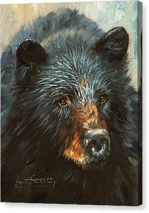 Canvas Print featuring the painting Black Bear by David Stribbling