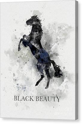 Black Beauty Canvas Print by Rebecca Jenkins