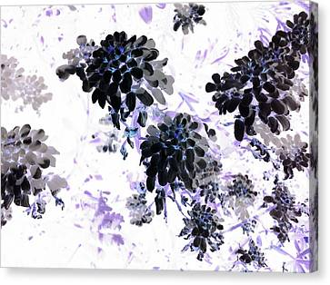 Black Blooms I Canvas Print