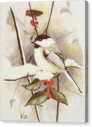 Black-capped Chickadee Canvas Print by Stan White