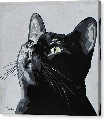 Black Cat Canvas Print by Slade Roberts
