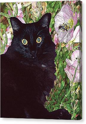 Black Cat Startled By A Bee Canvas Print