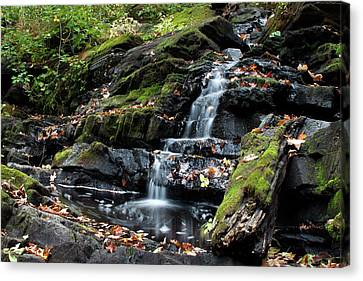 Black Creek Falls In Autumn, 2016 Canvas Print by Jeff Severson