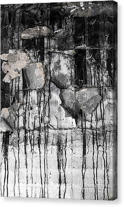 Black Drips Canvas Print by Svetlana Sewell