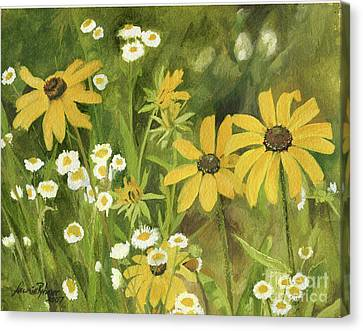 Black-eyed Susans In A Field Canvas Print