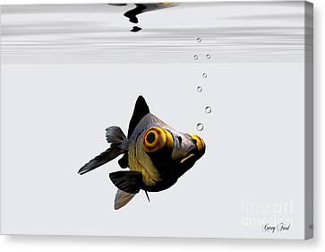 Black Goldfish Canvas Print by Corey Ford