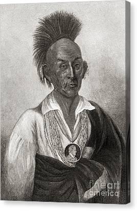 Necklace Canvas Print - Black Hawk by American School