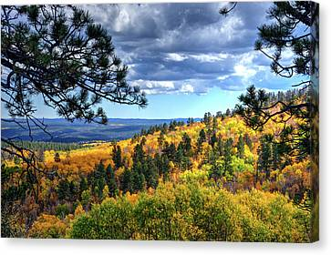 Black Hills Autumn Canvas Print