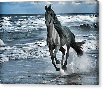 Black Horse Running Through Water Canvas Print by Lanjee Chee