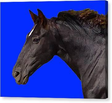Canvas Print featuring the digital art Black Horse Spirit Blue by Jana Russon