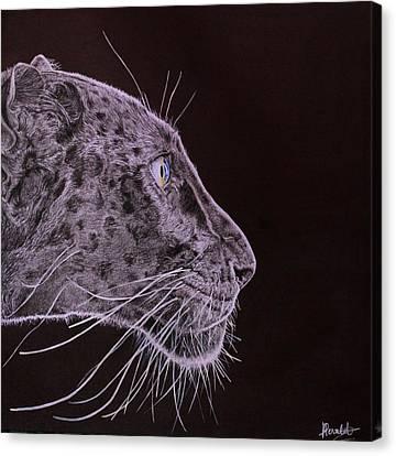 Black Is Black Canvas Print by Albane Devalet