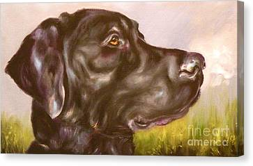 Black Lab In The Field Canvas Print by Susan A Becker