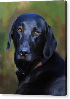 Black Lab Portrait Canvas Print
