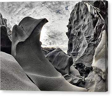 Black Magic Canyon Canvas Print by Leland D Howard