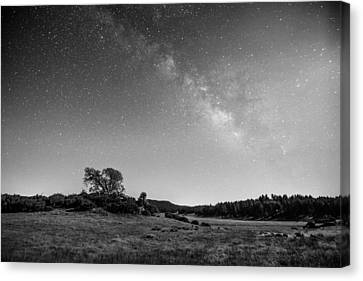 Canvas Print featuring the photograph Black Oak And Milky Way by Alexander Kunz