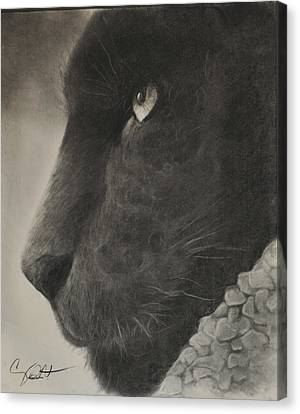 Portratis Canvas Print - Black Panther  by Adrian Pickett Jr