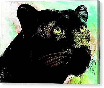 Black Panther Animal Art Canvas Print
