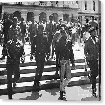 Black Panthers, 1967 Canvas Print by Granger