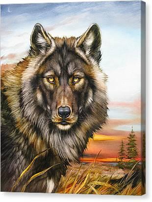 Black Phase Wolf Canvas Print by Martin Katon