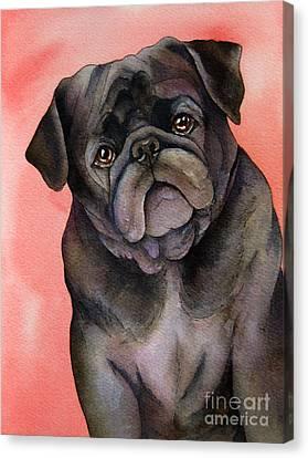 Black Pug Canvas Print by Cherilynn Wood