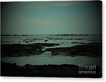 Black Rock Beach Canvas Print