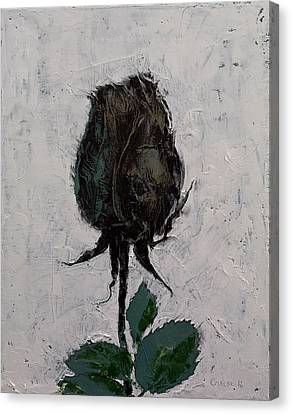 Black Rosebud Canvas Print by Michael Creese