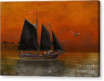 Black Sails In The Sunset Canvas Print by Chris Armytage