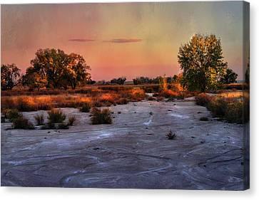 Canvas Print featuring the photograph Black Squirrel Creek Fall Scape by Ellen Heaverlo