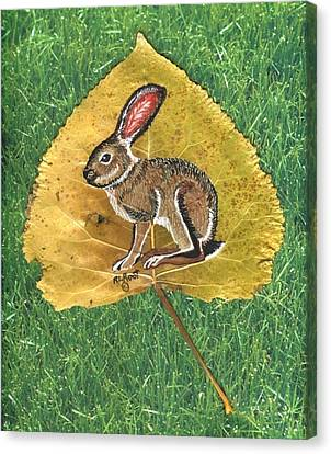 Black Tail Jack Rabbit  Canvas Print