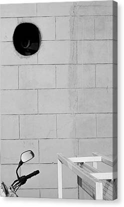 Black White Grey Canvas Print by Prakash Ghai