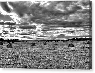 Canvas Print featuring the photograph Black-white Hay Day by Gary Smith