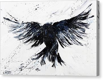 Blackbird Fly Canvas Print by Linda Clayton