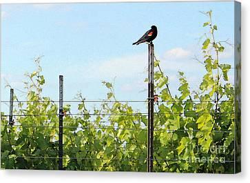 Grape Leaf Canvas Print - Blackbird Has Spoken by Joe Jake Pratt