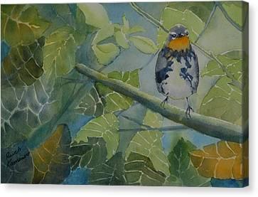 Blackburnian Warbler I Canvas Print by Ruth Kamenev