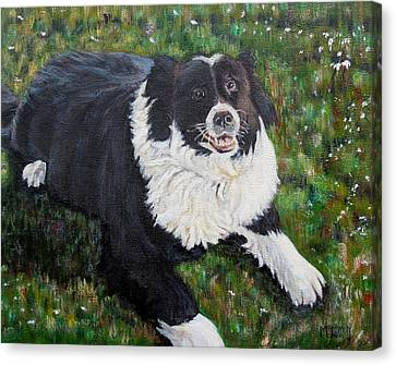 Canvas Print featuring the painting Blackie by Marilyn  McNish