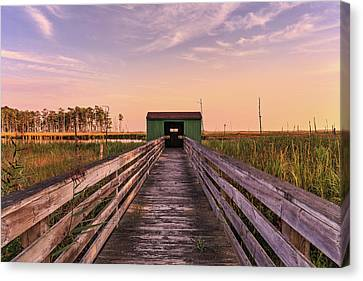 Canvas Print featuring the photograph Blackwater Blind by Jennifer Casey