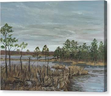 Blackwater National Wildlife Refuge Canvas Print by Edward Williams