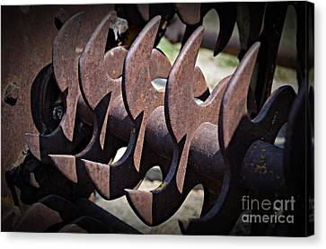 Canvas Print - Blades by Chalet Roome-Rigdon