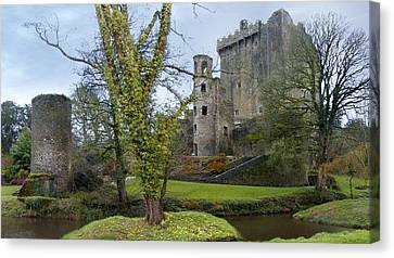 Mike Canvas Print - Blarney Castle 3 by Mike McGlothlen