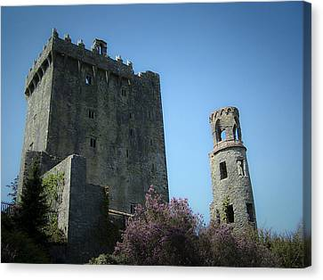 Blarney Castle And Tower County Cork Ireland Canvas Print by Teresa Mucha