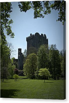 Blarney Castle Ireland Canvas Print by Teresa Mucha