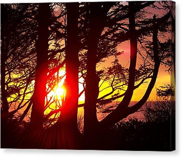 Blazing Sunset Canvas Print by Angi Parks