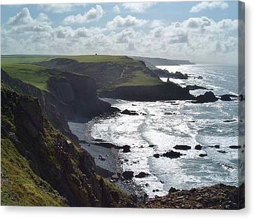 Blegberry Cliffs From Damehole Point Canvas Print by Richard Brookes