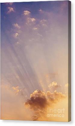 Morning Has Broken Canvas Print