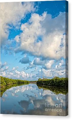 Blind Pass Bowman Beach Sanibel Florida Canvas Print by Edward Fielding