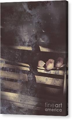 Blind Suspicion Canvas Print by Jorgo Photography - Wall Art Gallery