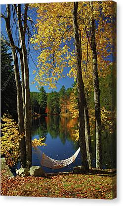 New England Autumn Canvas Print - Bliss - New England Fall Landscape Hammock by Jon Holiday