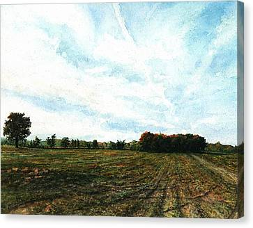 Bliss Road Canvas Print by Steven Hawkes