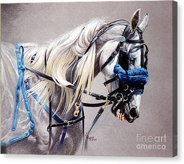 Blizzard Babe Canvas Print by Carrie L Lewis